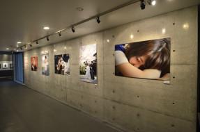 ワンダーフォト写真展2014